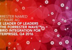 The Forrester Wave™ Hybrid Integration For Enterprises, Q4 2016