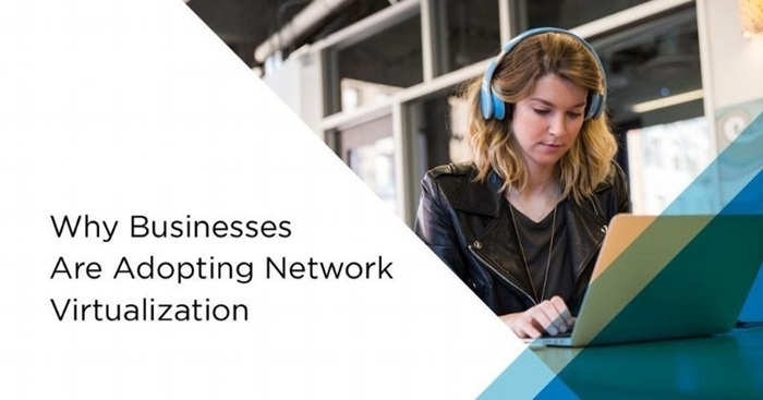 Why Businesses Are Adopting Networking Virtualization